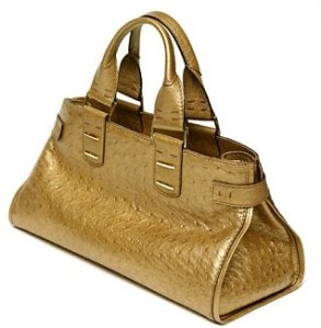 It's a Golden Carpetbag, not a purse!